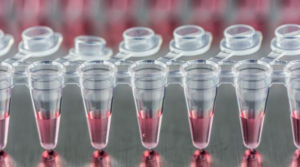 Moldex3D application in medical